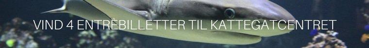 Kattegatcentret konkurrence side banner (1).jpg